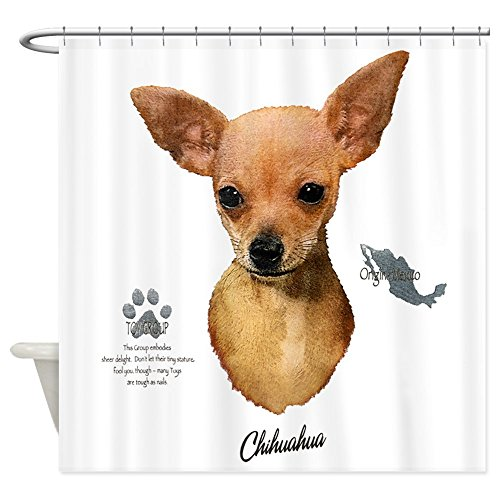 - Shower Curtain Chihuahua from Toy Group and Mexico
