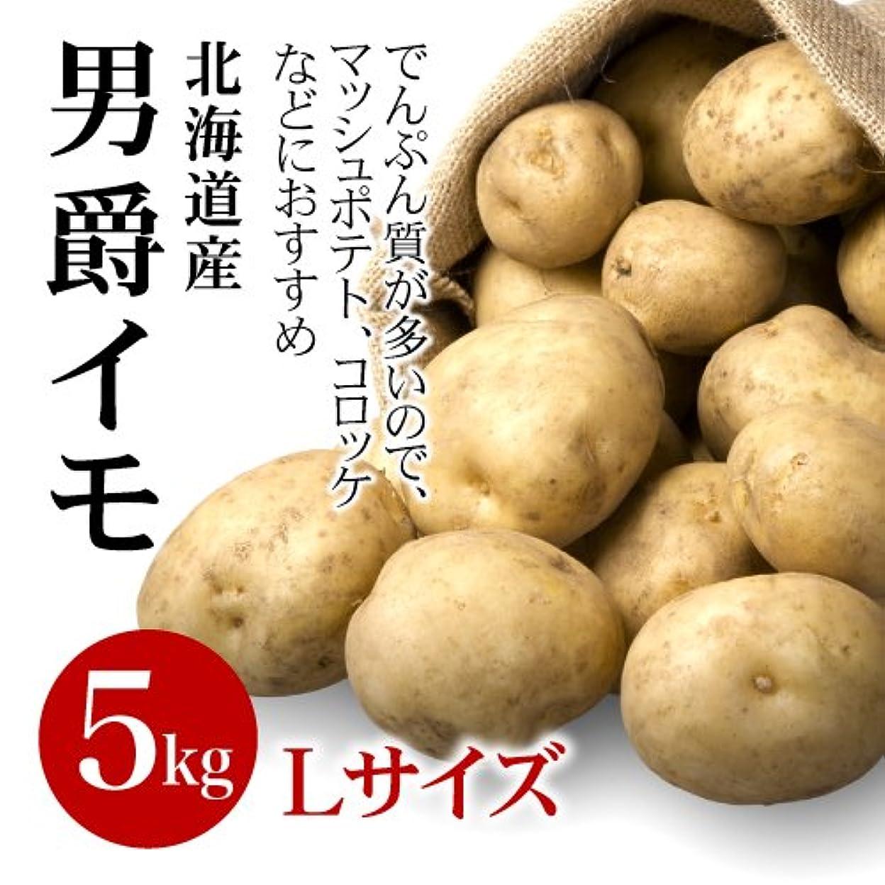 とても怒って郡北海道 ジャガイモ 【北あかり】 Mサイズ10kg じゃがいも