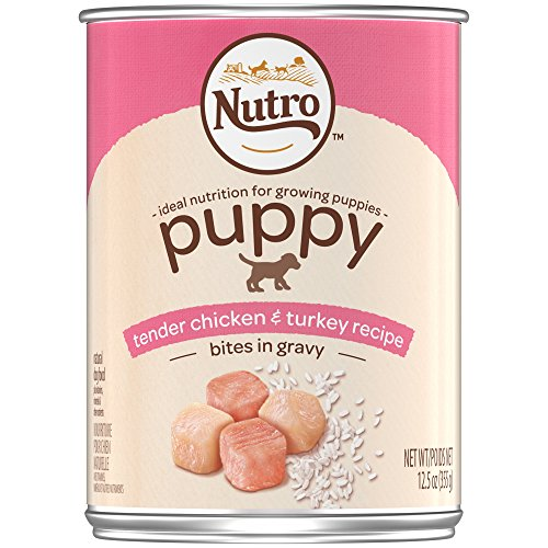 NUTRO PUPPY Canned Wet Dog Food Bites in Gravy Tender Chicken & Sweet Potato Recipe, (12) 12.5 oz. Cans