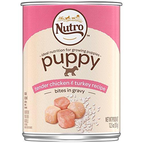 Nutro Large Breed Puppy Wet Dog Food Bites In Gravy  Chicken & Turkey 12 Pack
