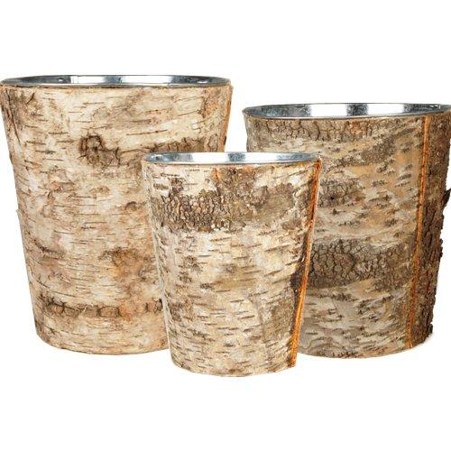 birch pots - 8
