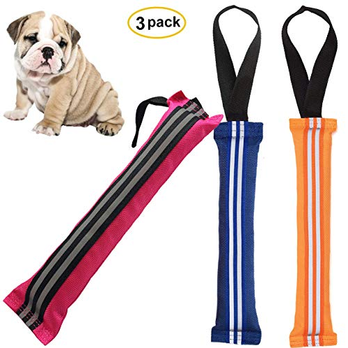 Handle Fire Tug Hose (Adusa Floating Fetch Dog Toys Pet Chew Tug Toy with Handle Training and Hunting Retrieving Bumper Toys for Small Dogs Outdoor Indoor Playing (3 Pack))