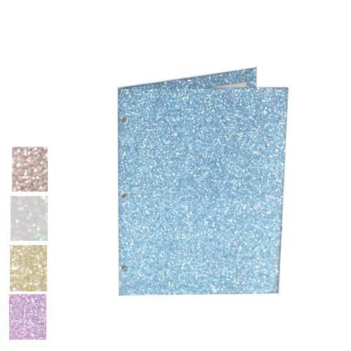 Promarx Asst Matte Glitter Portfolios, Case of ()