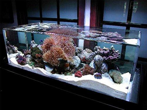 Sibelco Sable de silice pour aquarium Blanc Grand format: 25kg