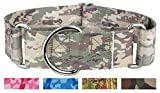 Country Brook Design1 1/2 Inch Mountain Viper Camo Martingale Dog Collar-Large