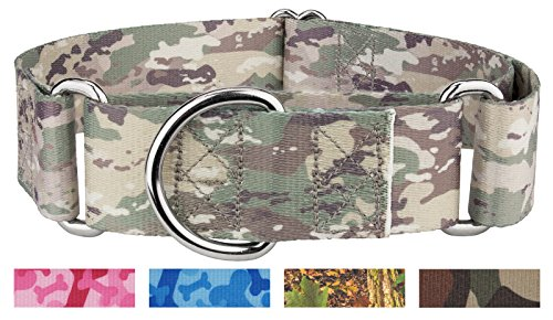 - Country Brook Design 1 1/2 Inch Mountain Viper Camo Martingale Dog Collar-Large