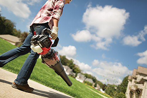 Leaf Blowers Lawn Vacuums