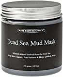 Dead Sea Mud Mask for Acne, Blackheads, and Oily Skin