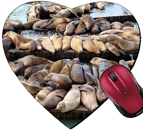 Liili Mousepad Heart Shaped Mouse Pads/Mat IMAGE ID: 17096492 Large group of Sea Lions rest on rows of Piers near Pier 39 in San Francisco - 39 Pier California Francisco San In