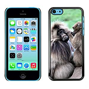 Hot Style Cell Phone PC Hard Case Cover // M00113968 Monkeys Ape Primate Grooming // Apple iPhone 5C