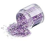 Alivego 10g/Box Gold Sliver Nail Glitter Powder Shinning Nail Mirror Powder (Purple)