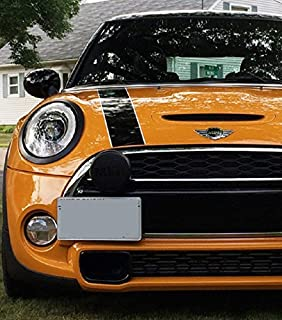 Installs in Seconds No Drilling R59 CravenSpeed Platypus License Plate Mount for Mini Roadster Made in USA | 2012-2015 Made of Stainless Steel /& Aluminum