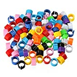 100pcs Bird Clip on Leg Rings 8mm Foot Ring Bands for Pigeon Dove Chicks Bantam Quail Lovebirds Finch Small Poultry Chicken (Mixed Colors)