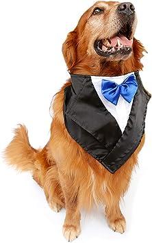 FLAdorepet - Disfraz de Esmoquin para Perro, con Pajarita y ...