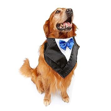 Amazon.com: FLAdorepet - Disfraz de tuxedo de perro grande ...