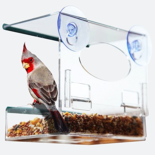 BEST WINDOW BIRD FEEDER - Bird Feeders for Outside with Strong Suction Cups & Removable Tray - Fun Gift - Finch Stick