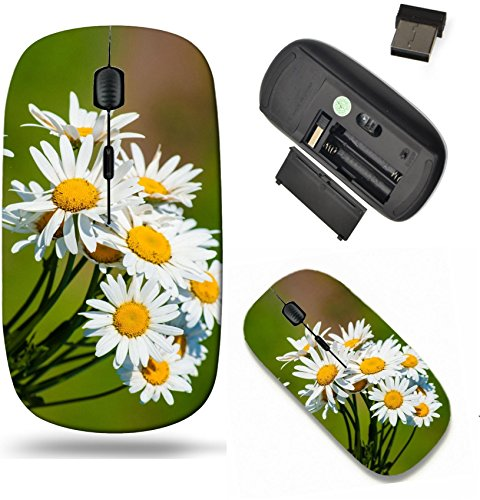 Liili Wireless Mouse Travel 2.4G Wireless Mice with USB Receiver, Click with 1000 DPI for notebook, pc, laptop, computer, mac book sunlit Daisies in green meadow macro Image ID ()