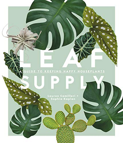 Leaf Supply: A Guide to Keeping Happy House Plants ()