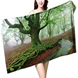 UHOO2018 Bath Towel Big Beech in Spring with Roots and River Bathroom Towels W 27.5' x L 55'