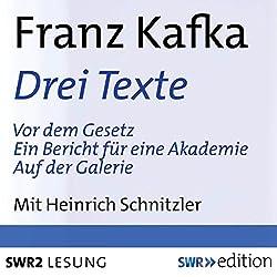 Drei Texte (Vor dem Gesetz / Ein Bericht für einen Akademie / Auf der Galerie)