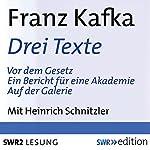 Drei Texte (Vor dem Gesetz / Ein Bericht für einen Akademie / Auf der Galerie) | Franz Kafka