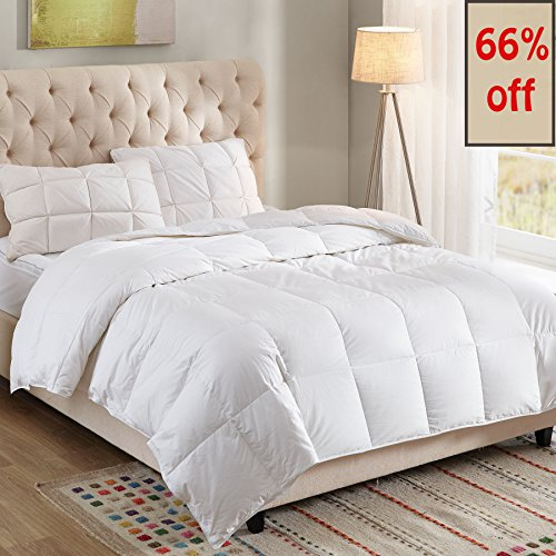 WhatsBedding 100% Cotton Down Comforter White Goose Duck Down And Feather Filling,Hypoallergenic. All Season Duvet Insert or Stand-Alone Comforter (Queen or Full) (Down Insert)