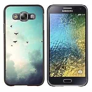 Qstar Arte & diseño plástico duro Fundas Cover Cubre Hard Case Cover para Samsung Galaxy E5 E500 (Aves cielo sombrío)