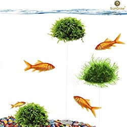 3-Piece Plastic Moss Stones - Natural Aquarium Water Filter - Live Plant Holder - Bio Ball for Fish & Shrimp Tanks - Submerged or Floating Ball Décor - Easy Set-up - Cultivation Platform
