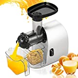 Slow Juicer Masticating Juicer Extractor Juicer Machine for High Nutrient Fruit and Vegetable Juice with Juice Cup, Pulp Cup and Cleaning Brush [US STOCK] (Type 1(Masticating Juicer))