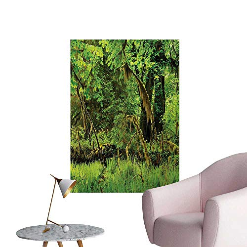 (Anzhutwelve Rainforest Photographic Wallpaper Trees with Moss Natural Paradise Silence in The Wild Nature Relaxation IllustrationGreen W32 xL36 Cool Poster )