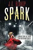 Spark (Red-Line: The Fletcher Family Saga)