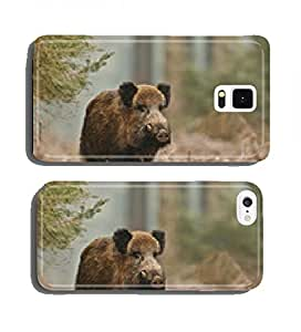 Wild boar in Bavarian forest cell phone cover case Samsung S3