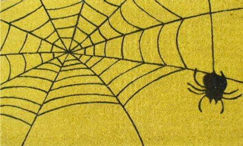 Home More 120911729 Spiderweb Doormat, 17 x 29 x 0.60 , Multicolor