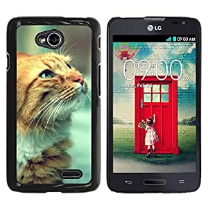 PC/Aluminum Funda Carcasa protectora para LG Optimus L70 / LS620 / D325 / MS323 Cat Whiskers Ginger Red Yellow Face Orange / JUSTGO PHONE PROTECTOR