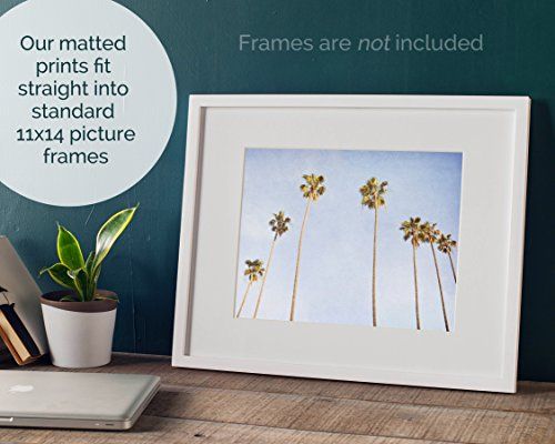 Venice Beach Palm Tree Wall Art, Tropical California Coastal Wall Decor Picture, 8x10 Matted Photographic Print (fits 11x14 frame), 'Venice Palms' by Offley Green (Image #1)