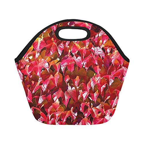 Insulated Neoprene Lunch Bag Wine Leaves Plant Nature Large Size Reusable Thermal Thick Lunch Tote Bags For Lunch Boxes For Outdoors,work, Office, (Metro Wine Box)