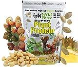 Super Plant Protein Powder