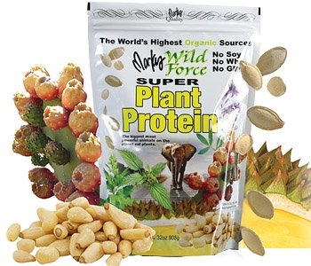 Super Plant Protein Powder by Markus Products (Image #1)