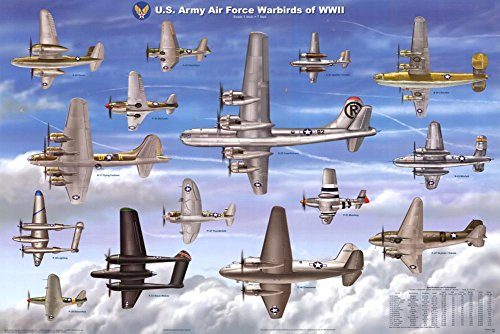 USAAF Warbirds WWII Airplane Educational Military Chart Poster 36 x - Airplane Warbird