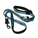 Kurgo 6 In 1 Quantum Dog Leash   Multi-Functional Hands Free Leash for Dogs   Reflective & Adjustable 6' Lead   Dog Waist Running Belt   Padded Handle   for Training, Hiking, Or Jogging  Coastal Blue