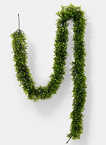 Serene Spaces Living Artificial Green Boxwood Garland - Ideal for Decorating Windows at Parties or Events, Measures 5.5 Feet (Artificial Boxwood Garland)