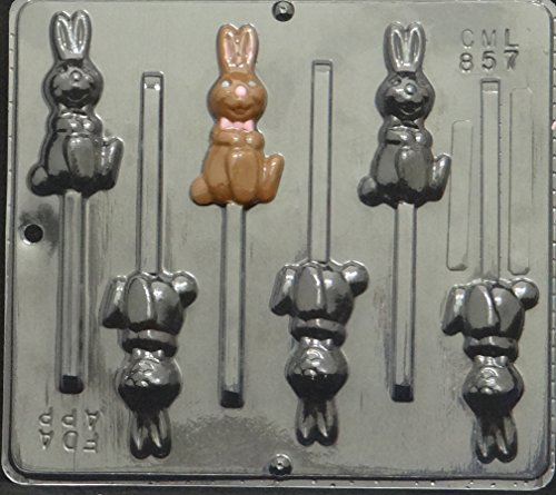 Hoping Bunny Lollipop Chocolate Candy Mold Easter 857