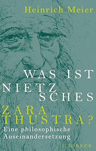 Was Ist Nietzsches Zarathustra   Eine Philosophische Auseinandersetzung