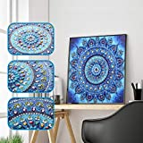 Iuhan  Special Shaped 5D Diamond Painting Kits for Adults and Kids, Floral Diamond Painting Special Shaped DIY 5D Cross Stitch Kits Embroidery Arts Craft Mosaic for Home Wall Decoration (B)