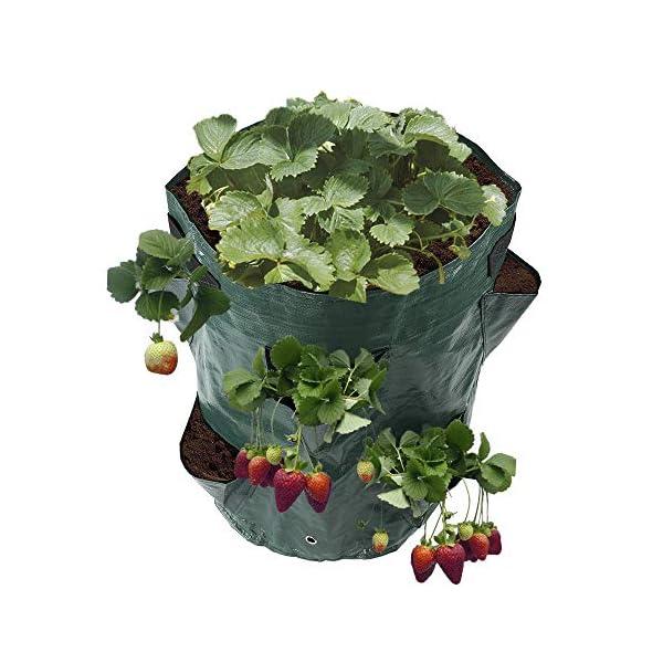 ZhiWei Confezione da 2 Borse di impianto Crescere, 10 Gallon Patate Strawberry Planter Borse Crescere Borse con 8 Pocket… 1 spesavip