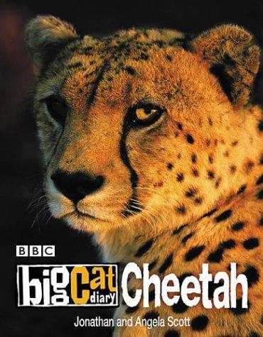 Cheetah (Big Cat Diary)