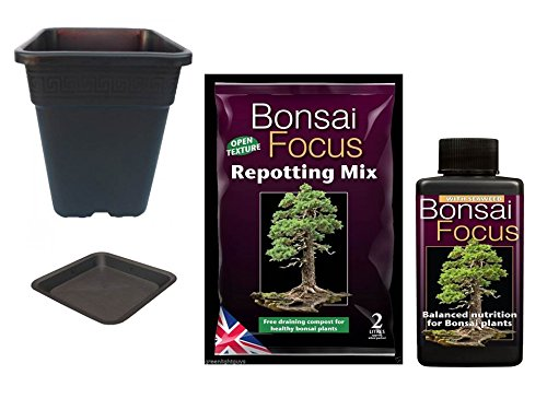 bonsai focus repotting mix 2 litre bag & bonsai focus 100ml & premium square 2 litre pot & saucer GROWTH TECHNOLOGY