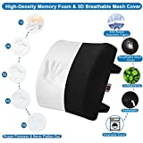 LOVEHOME Memory Foam Lumbar Support Back Cushion