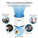 LEVOIT LV-H132 Air Purifier for Home with True HEPA Filter, Odor Allergies Eliminator for Smokers, Dust, Mold, Pets, Air Cleaner with Night Light, US-120V, 2 Pack, White, 2-Year Warranty