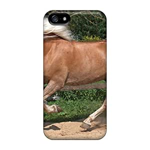 Faddish Phone Haflinger Horse Cases For Iphone 5/5s / Perfect Cases Covers
